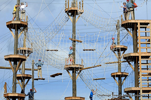 People climbing on an aerial adventure park.