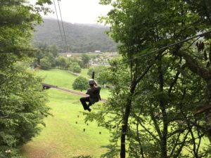 Person zip lining through trees.