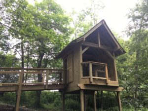 Tree house with ramp leading up to it.