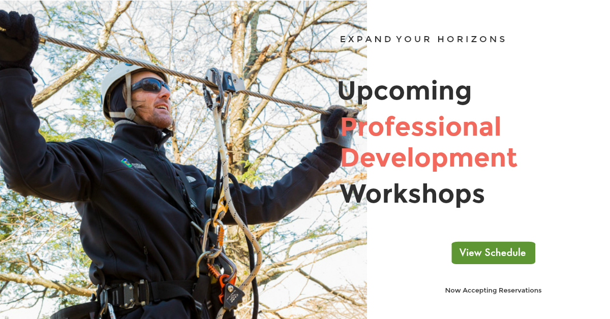Professional development ad.